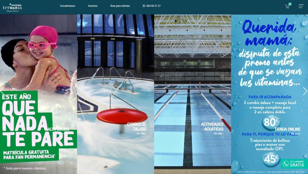 pululart desarrolló y diseño la web de termaria